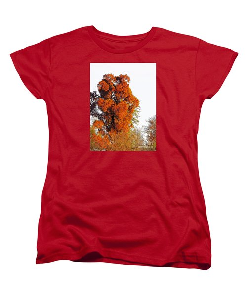 Red-orange Fall Tree Women's T-Shirt (Standard Cut) by Craig Walters