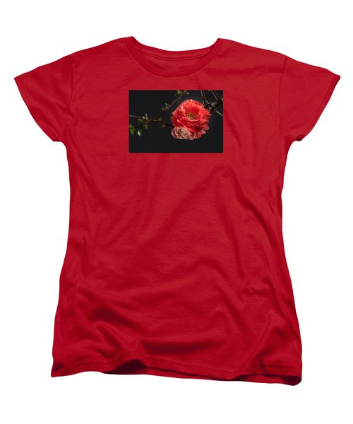 Red Plum In Early Spring Women's T-Shirt (Standard Cut) by Catherine Lau