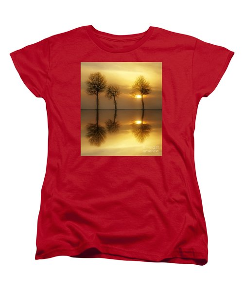 Remains Of The Day Women's T-Shirt (Standard Cut) by Jacky Gerritsen