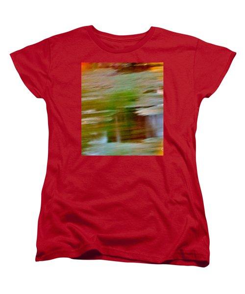 Rice Lake Women's T-Shirt (Standard Cut)