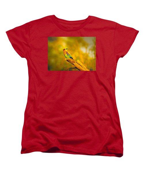 Roller Women's T-Shirt (Standard Cut) by Patrick Kain