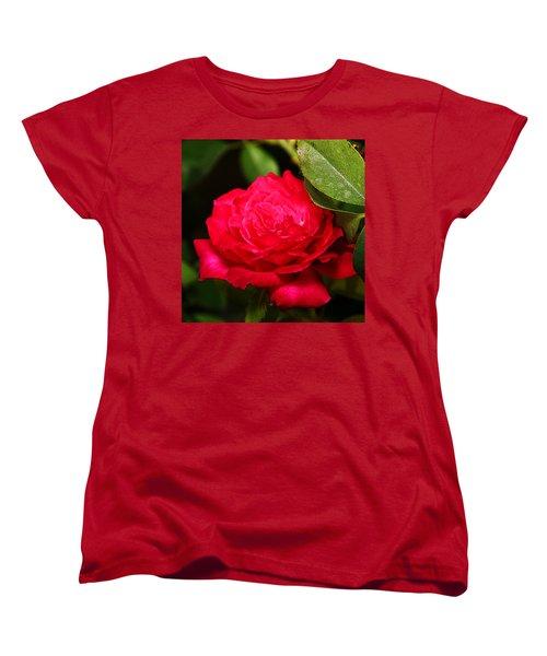 Rose Women's T-Shirt (Standard Cut) by Anthony Jones