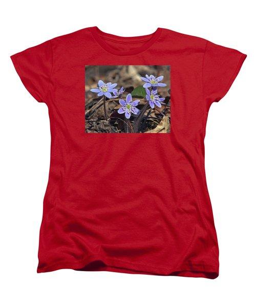 Round-lobed Hepatica Dspf116 Women's T-Shirt (Standard Cut) by Gerry Gantt
