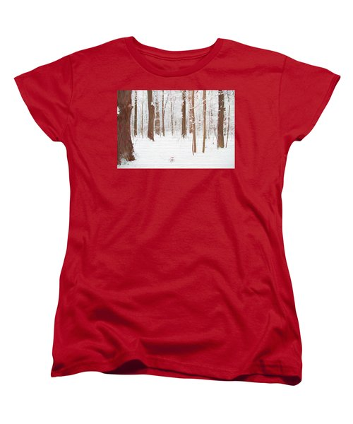 Rustic Winter Forest Women's T-Shirt (Standard Cut) by Dan Sproul