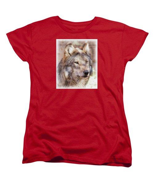 Sancho Women's T-Shirt (Standard Cut) by Elaine Malott