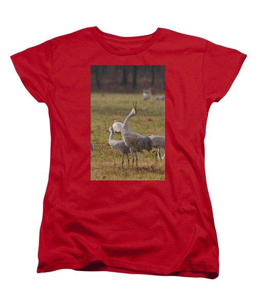 Sandhill Delight Women's T-Shirt (Standard Cut) by Shari Jardina