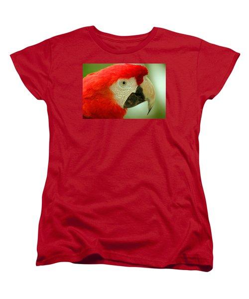 Scarlett Macaw South America Women's T-Shirt (Standard Cut) by Ralph A  Ledergerber-Photography