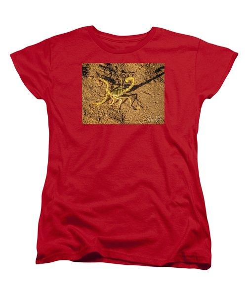 Women's T-Shirt (Standard Cut) featuring the photograph Scorpion by Robert Bales