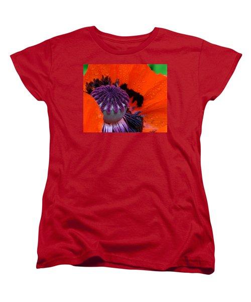 Scottie Women's T-Shirt (Standard Cut) by Priscilla Richardson