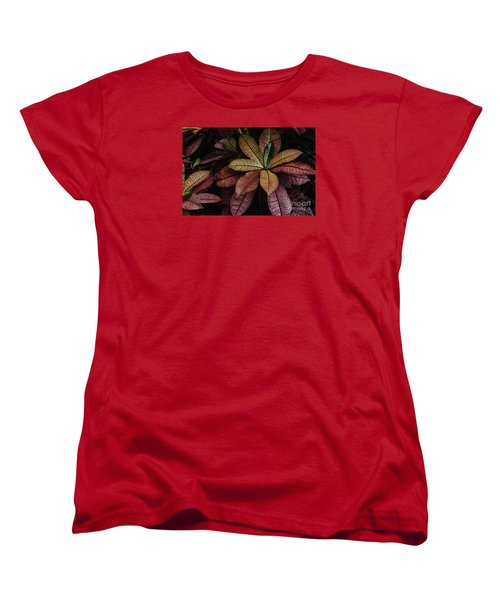 Women's T-Shirt (Standard Cut) featuring the photograph Shades Of Red by Judy Wolinsky