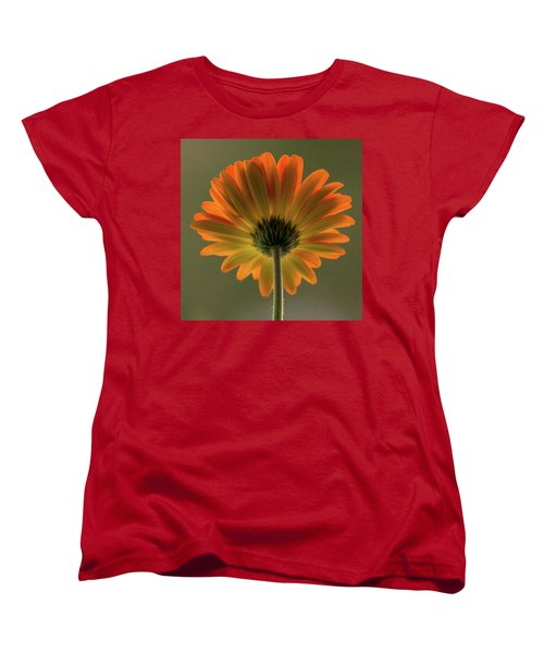 Shine Bright Gerber Daisy Square Women's T-Shirt (Standard Cut) by Terry DeLuco