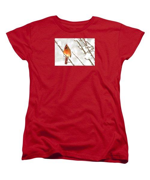 Snow Cardinal Women's T-Shirt (Standard Cut) by Marion Johnson