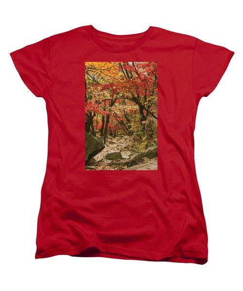 Solitary Women's T-Shirt (Standard Cut) by Hyuntae Kim