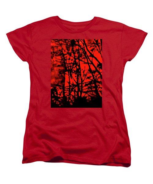 Spirit Of The Mist Women's T-Shirt (Standard Cut) by Gina O'Brien