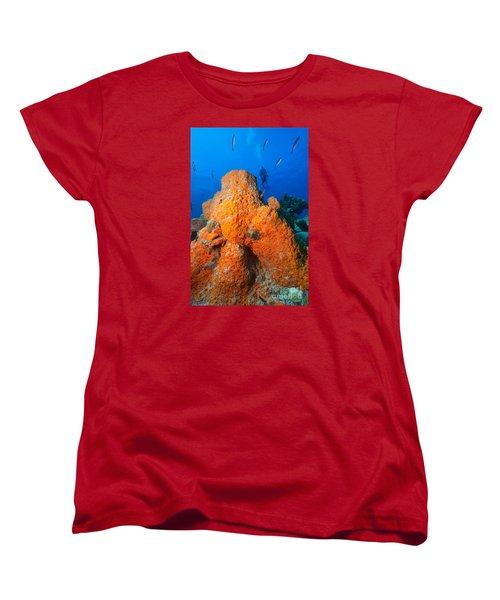Sponge Mountain Women's T-Shirt (Standard Cut) by Aaron Whittemore