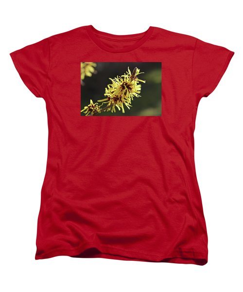 Women's T-Shirt (Standard Cut) featuring the photograph Spring by Wilhelm Hufnagl