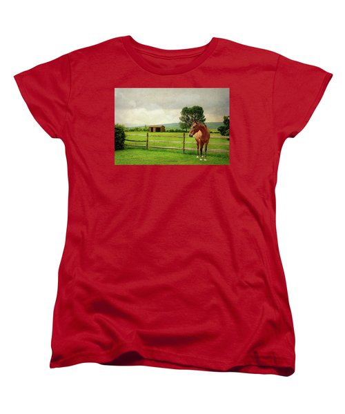 Women's T-Shirt (Standard Cut) featuring the photograph Stallion At Fence by Diana Angstadt