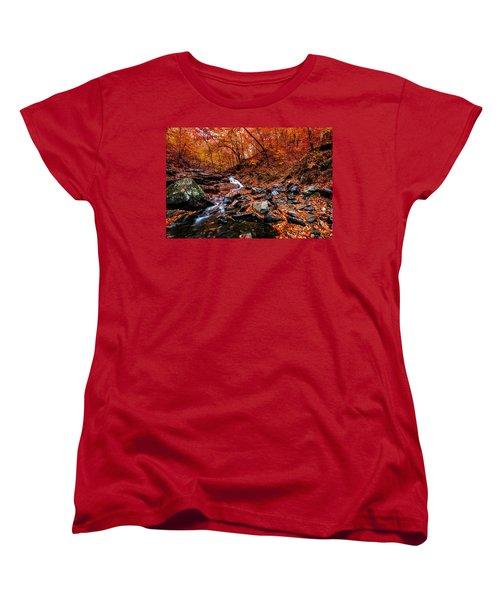 Women's T-Shirt (Standard Cut) featuring the photograph Stress Relief by Edward Kreis