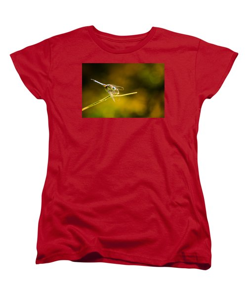 Summer Days Women's T-Shirt (Standard Cut) by Craig Szymanski