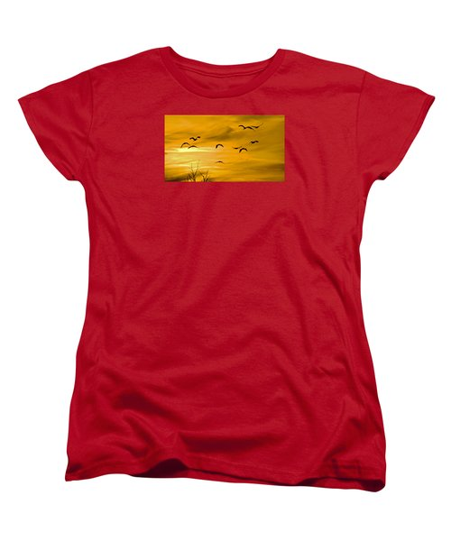 Sunset Fliers Women's T-Shirt (Standard Cut) by Wanda Krack