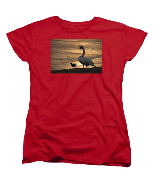 Women's T-Shirt (Standard Cut) featuring the photograph Swan And Baby At Sunset by Richard Bryce and Family