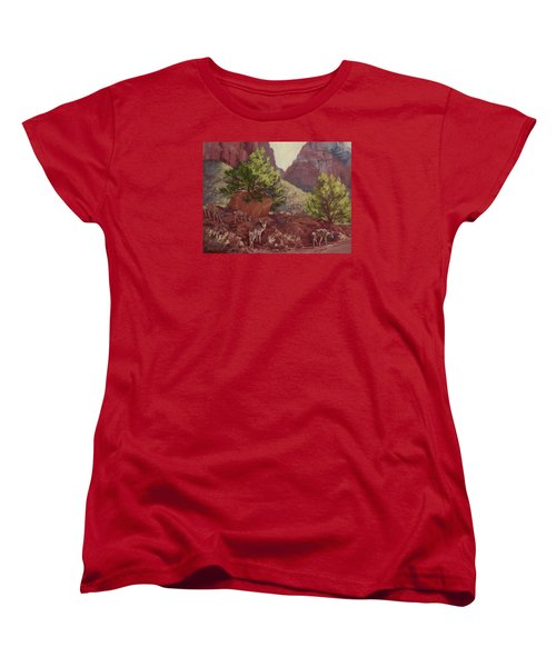 Switchback Stop For Wildlife Women's T-Shirt (Standard Cut) by Jane Thorpe