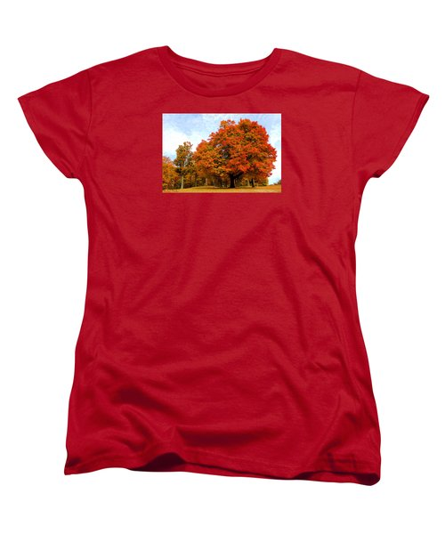 Women's T-Shirt (Standard Cut) featuring the photograph The Beauty Of Autumn  by Michael Rucker