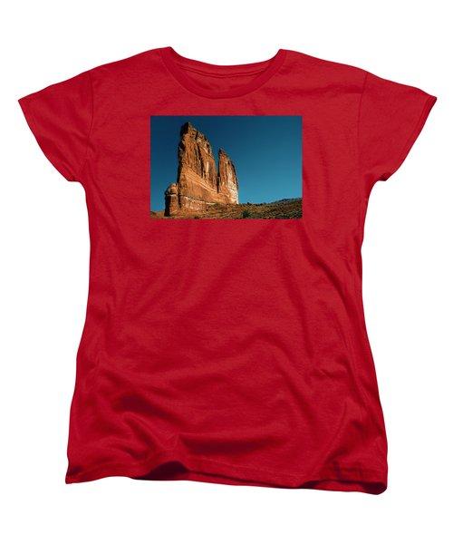 The Organ Women's T-Shirt (Standard Cut) by Alex Galkin