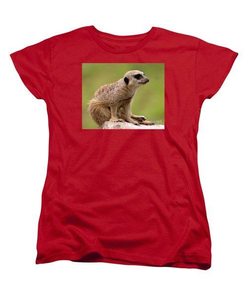 The Sentinel Women's T-Shirt (Standard Cut) by Baggieoldboy