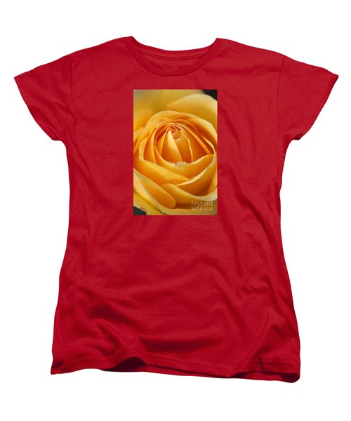 The Yellow Rose Women's T-Shirt (Standard Cut) by Joy Watson