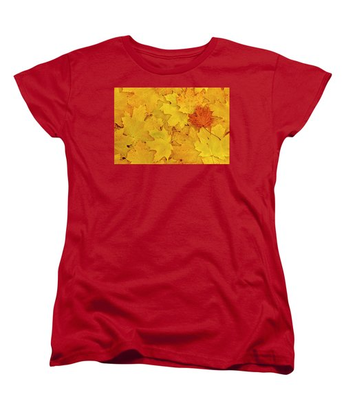 Women's T-Shirt (Standard Cut) featuring the photograph Understory by Tony Beck