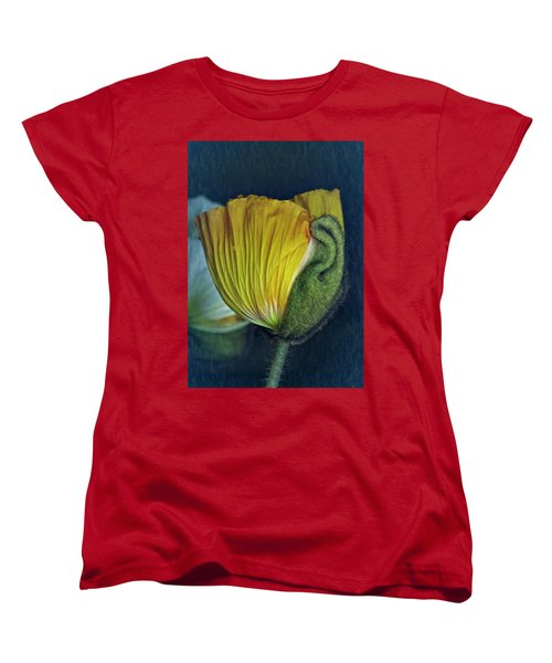Vintage Poppy 2017 No. 1 Women's T-Shirt (Standard Cut) by Richard Cummings