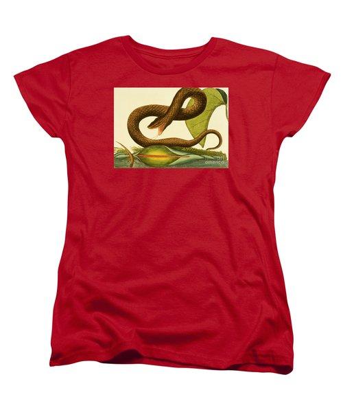 Viper Fusca Women's T-Shirt (Standard Cut) by Mark Catesby