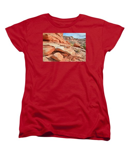 Wash 5 In Valley Of Fire Women's T-Shirt (Standard Cut) by Ray Mathis