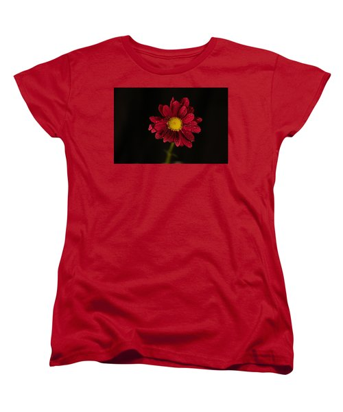 Women's T-Shirt (Standard Cut) featuring the photograph Water Drops On A Flower by Jeff Swan