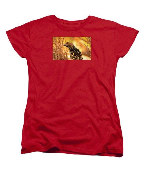 Western Bowerbird Women's T-Shirt (Standard Cut) by Racheal  Christian