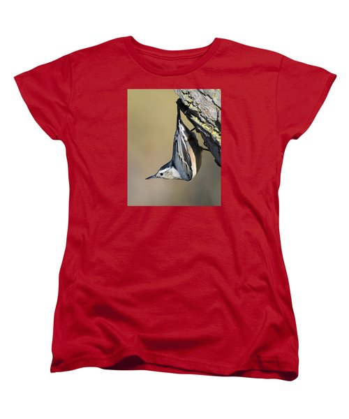 White-breasted Nuthatch Women's T-Shirt (Standard Cut) by Stephen Flint