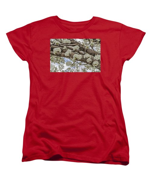 White Crabapple Blossoms Women's T-Shirt (Standard Cut) by Sue Smith