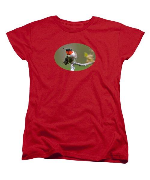 Wild Birds - Ruby-throated Hummingbird Women's T-Shirt (Standard Cut) by Christina Rollo