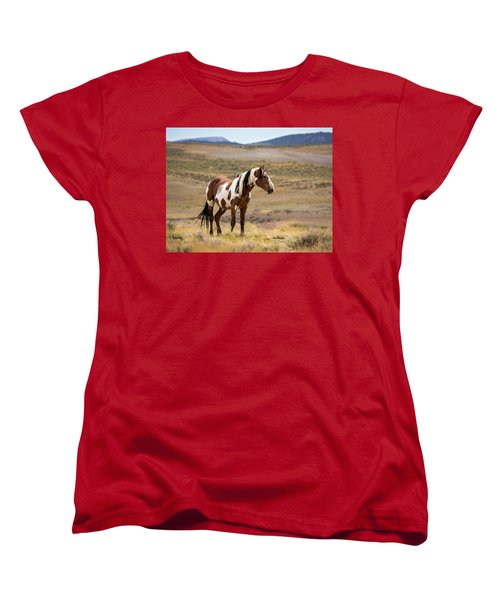 Wild Mustang Stallion Picasso Of Sand Wash Basin Women's T-Shirt (Standard Cut)