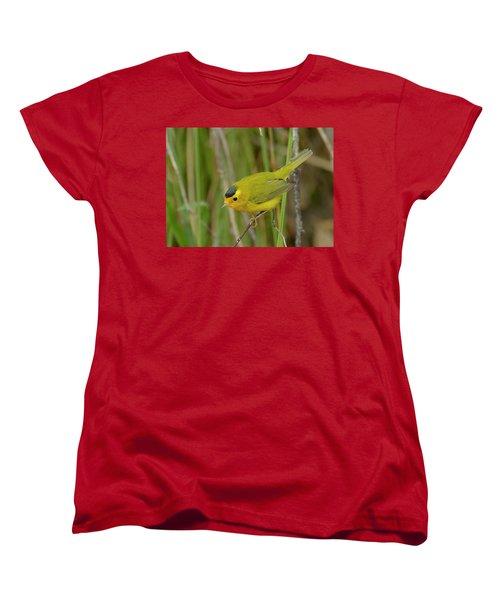 Wilson's Warbler Women's T-Shirt (Standard Cut) by Doug Herr