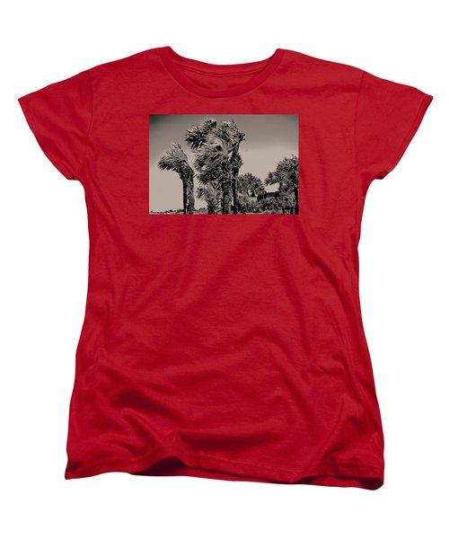 Windy Day At Beach Women's T-Shirt (Standard Cut)
