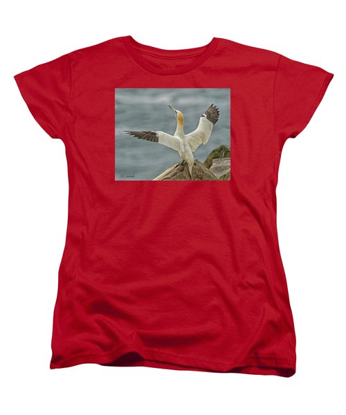 Wing Flap Women's T-Shirt (Standard Cut) by CR Courson