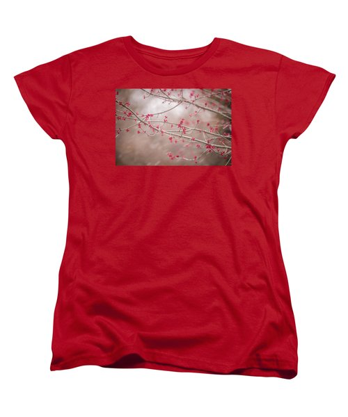 Women's T-Shirt (Standard Cut) featuring the photograph Winter And Spring by Terry DeLuco
