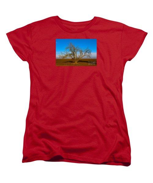 Winter Apple Tree Women's T-Shirt (Standard Cut) by Suzanne Lorenz