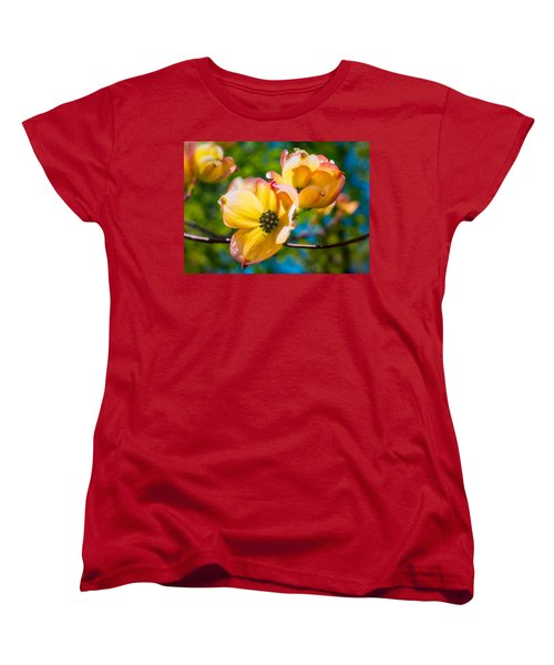 Within Women's T-Shirt (Standard Cut) by Craig Szymanski