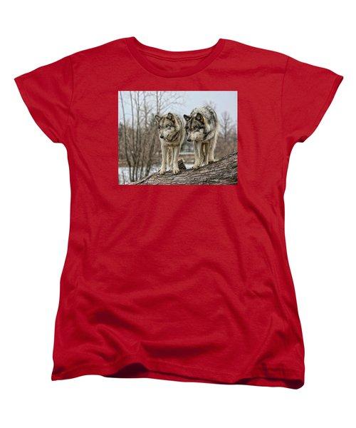 Wolf Pair Women's T-Shirt (Standard Cut) by Shari Jardina