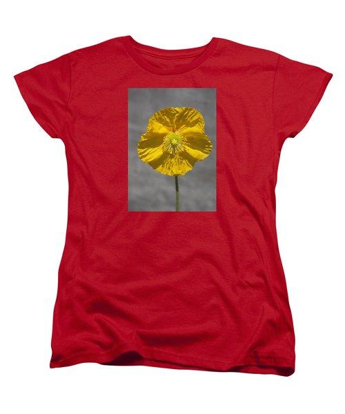 Wrinkled Beauty Women's T-Shirt (Standard Cut) by Morris  McClung