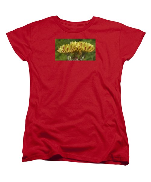 Yellow And Red Cactus Flowers Women's T-Shirt (Standard Cut) by Elvira Butler