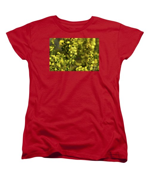 Yellow Blooms Women's T-Shirt (Standard Cut) by Cassandra Buckley